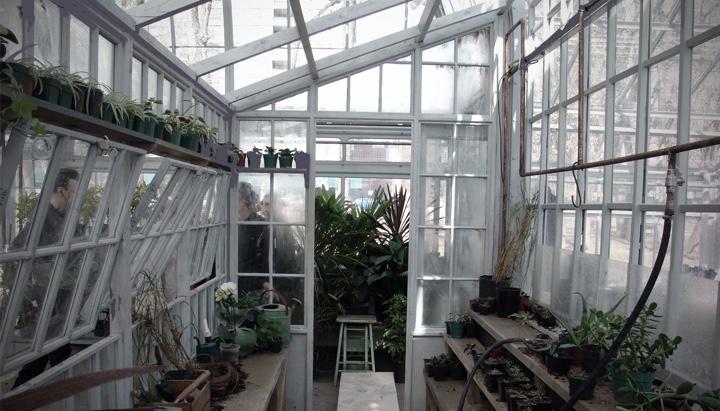 medical shop, pool shop, the best shop, retail shop, science shop, car repair shop, shed shop, carport shop, basement shop, photography shop, on greenhouse and shop design