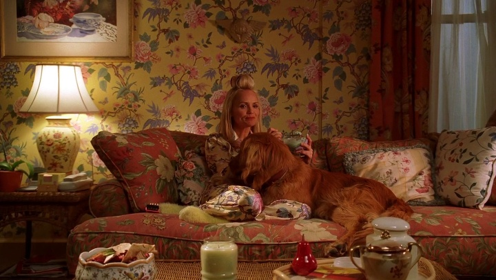 Production Design Of Pushing Daisies Interview With