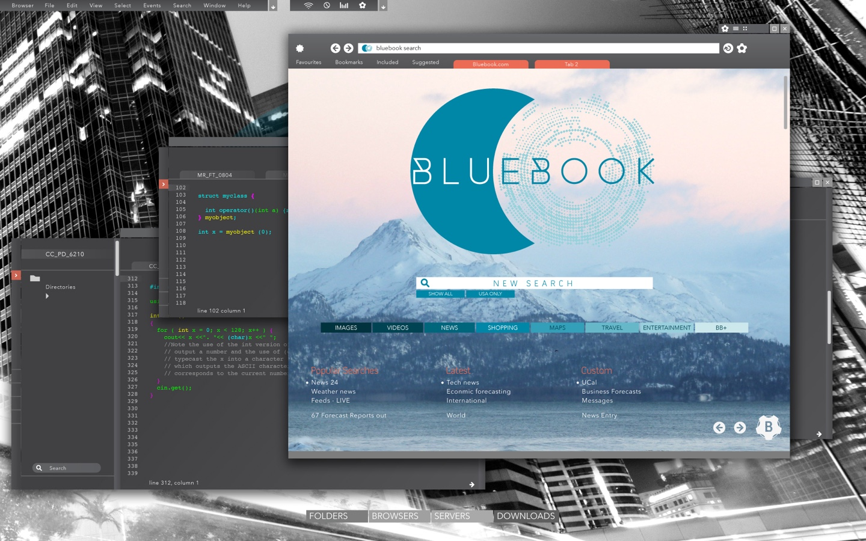 Blue book report citation